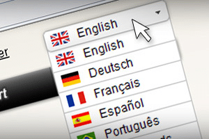 Translator's Glossary: Website Localization